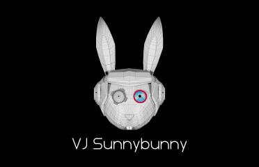 VJ Sunnybunny